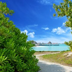 Отель Maldives Seashine Guesthouse Мальдивы, Хураа - отзывы, цены и фото номеров - забронировать отель Maldives Seashine Guesthouse онлайн пляж