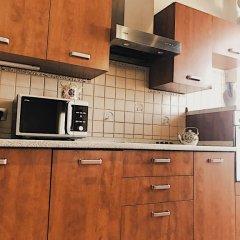 Гостиница Red Square Kremlin Top Floor Suites Apartments в Москве отзывы, цены и фото номеров - забронировать гостиницу Red Square Kremlin Top Floor Suites Apartments онлайн Москва фото 7