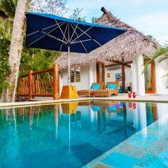 Отель Tropica Island Resort - Adults Only бассейн