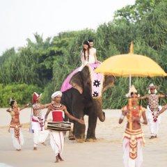 Отель Taj Bentota Resort & Spa Шри-Ланка, Бентота - 2 отзыва об отеле, цены и фото номеров - забронировать отель Taj Bentota Resort & Spa онлайн детские мероприятия