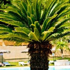 Achousa Hotel фото 10