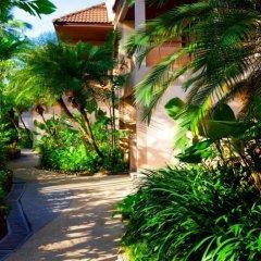 Отель Coconut Village Resort фото 5