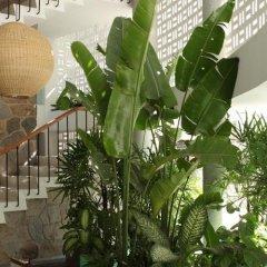 Отель Boca Chica Мексика, Акапулько - отзывы, цены и фото номеров - забронировать отель Boca Chica онлайн фото 9