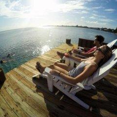 Отель Utila Гондурас, Остров Утила - отзывы, цены и фото номеров - забронировать отель Utila онлайн приотельная территория фото 2
