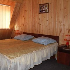 Гостиница Даурия в Листвянке - забронировать гостиницу Даурия, цены и фото номеров Листвянка комната для гостей фото 3