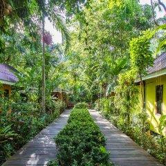 Отель Sunda Resort фото 8