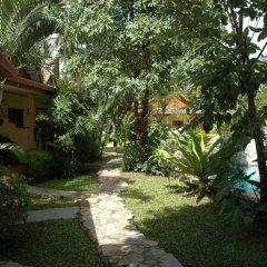 Отель Palm Garden Resort фото 3