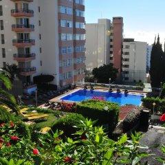 Отель Dorisol Buganvilia Португалия, Фуншал - отзывы, цены и фото номеров - забронировать отель Dorisol Buganvilia онлайн фото 8