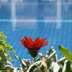 Majestic Hotel Турция, Олудениз - 5 отзывов об отеле, цены и фото номеров - забронировать отель Majestic Hotel онлайн приотельная территория