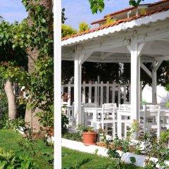 Отель Teos Lodge Pansiyon & Restaurant Сыгаджик фото 2