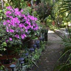 Отель Casa de las Flores Мексика, Тлакуепакуе - отзывы, цены и фото номеров - забронировать отель Casa de las Flores онлайн
