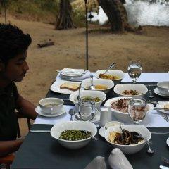 Отель Mahoora Tented Safari Camp - Kumana Шри-Ланка, Яла - отзывы, цены и фото номеров - забронировать отель Mahoora Tented Safari Camp - Kumana онлайн питание фото 3