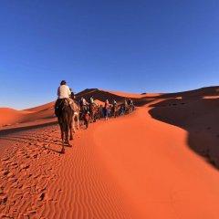 Отель Palmeras Y Dunas Марокко, Мерзуга - отзывы, цены и фото номеров - забронировать отель Palmeras Y Dunas онлайн приотельная территория