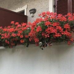 Отель Garnì Villa Betty Меран балкон