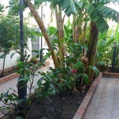 Отель Holiday Sun Lodge Appartamento Vacanze Джардини Наксос фото 5
