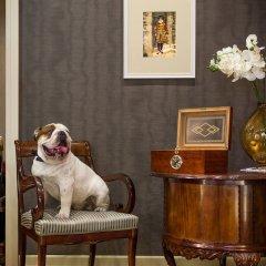 Гостиница Брайтон с домашними животными фото 2