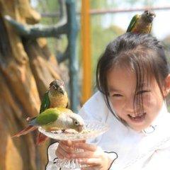 Yonglian Resort Hotel гостиничный бар