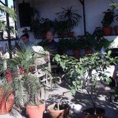 Отель Holyland Guest House Непал, Катманду - отзывы, цены и фото номеров - забронировать отель Holyland Guest House онлайн фото 6