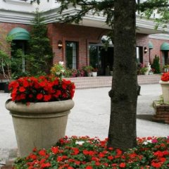Hotel Abest Happo Aldea Хакуба