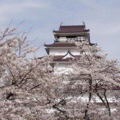 Отель Oya No Yu Япония, Айдзувакамацу - отзывы, цены и фото номеров - забронировать отель Oya No Yu онлайн приотельная территория