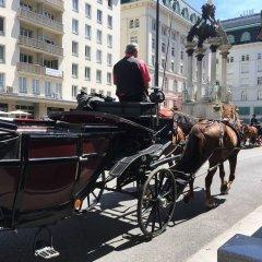 Отель Bella Vienna City Apartments Австрия, Вена - отзывы, цены и фото номеров - забронировать отель Bella Vienna City Apartments онлайн фото 8