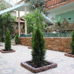 Гостиница Aida Guest House в Сочи отзывы, цены и фото номеров - забронировать гостиницу Aida Guest House онлайн фото 16