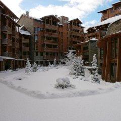 Апартаменты Saint Ivan Ski Apartments Банско фото 22