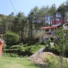 Отель Mount Paradise Непал, Нагаркот - отзывы, цены и фото номеров - забронировать отель Mount Paradise онлайн фото 12