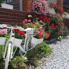 Urla Yelken Hotel Турция, Урла - отзывы, цены и фото номеров - забронировать отель Urla Yelken Hotel - Adults Only онлайн