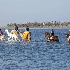 Отель Calimera Yati Beach All Inclusive Тунис, Мидун - отзывы, цены и фото номеров - забронировать отель Calimera Yati Beach All Inclusive онлайн приотельная территория фото 2