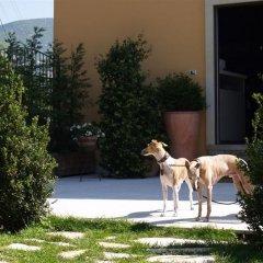 Отель Relais San Michele Риволи-Веронезе с домашними животными