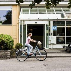 Отель Danhostel Copenhagen Bellahøj спортивное сооружение