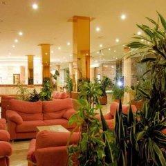Отель Aparthotel Tropic Garden Испания, Санта-Эулалия-дель-Рио - отзывы, цены и фото номеров - забронировать отель Aparthotel Tropic Garden онлайн интерьер отеля фото 3