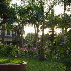 Отель Chitwan Adventure Resort Непал, Саураха - отзывы, цены и фото номеров - забронировать отель Chitwan Adventure Resort онлайн фото 10