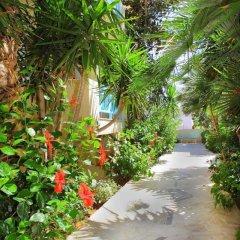 Tsalos Beach Hotel фото 4