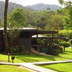 Отель Chachagua Rainforest Ecolodge фото 22