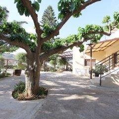 Отель Bali Paradise Hotel Греция, Милопотамос - отзывы, цены и фото номеров - забронировать отель Bali Paradise Hotel онлайн фото 12