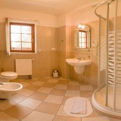 Отель Vitkova Hora Чехия, Карловы Вары - 1 отзыв об отеле, цены и фото номеров - забронировать отель Vitkova Hora онлайн ванная