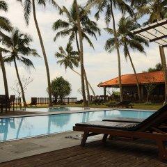 Отель Blue Beach Шри-Ланка, Ваддува - отзывы, цены и фото номеров - забронировать отель Blue Beach онлайн с домашними животными