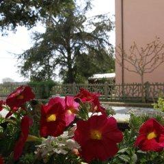 Отель La Mimosa Кастаньето-Кардуччи фото 7