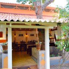 Отель Morning Star Guest House питание фото 2