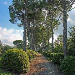 Отель Agriturismo Il Parco Di Kipo Монтефано фото 6