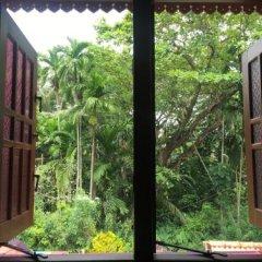 Отель Jungle Guest House Шри-Ланка, Галле - отзывы, цены и фото номеров - забронировать отель Jungle Guest House онлайн комната для гостей фото 3