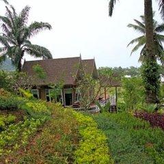 Отель Palm Paradise Resort фото 13