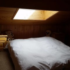 Отель Gstaad - Amazing Lake Chalet детские мероприятия