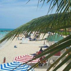 Отель Caribic House Hotel Ямайка, Монтего-Бей - отзывы, цены и фото номеров - забронировать отель Caribic House Hotel онлайн фото 5