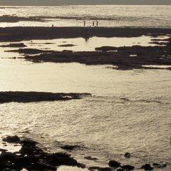 Отель Sofitel Casablanca Tour Blanche Марокко, Касабланка - отзывы, цены и фото номеров - забронировать отель Sofitel Casablanca Tour Blanche онлайн пляж фото 2