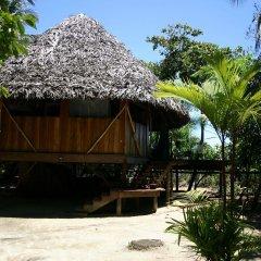Отель Al Natural Resort фото 6