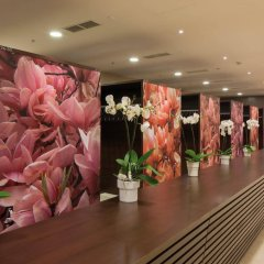 Отель Austria Trend Savoyen Вена спа фото 2