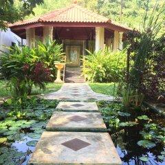 Отель Paradise Garden фото 21